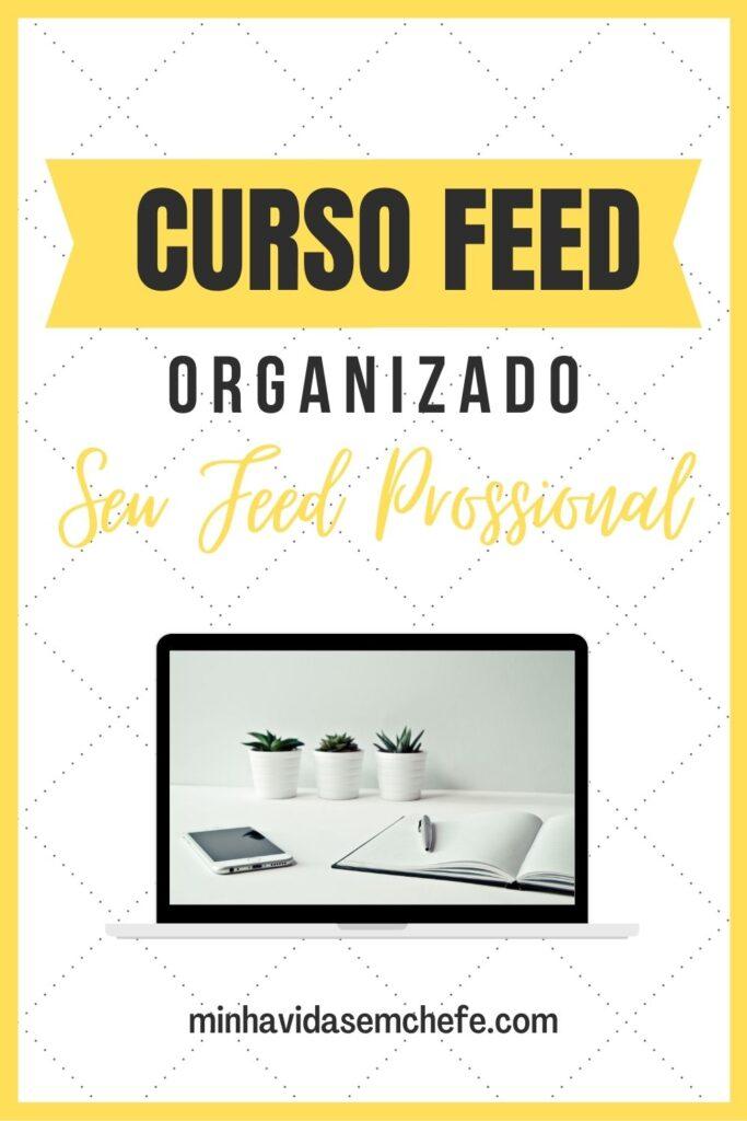 Curso-feed-organizado